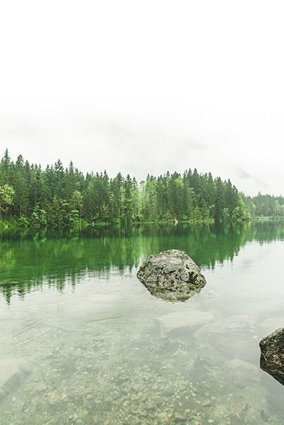 In einem Fluss mit klarem Wasser liegt ein großer Stein, im Hintergrund sind grüne Bäume