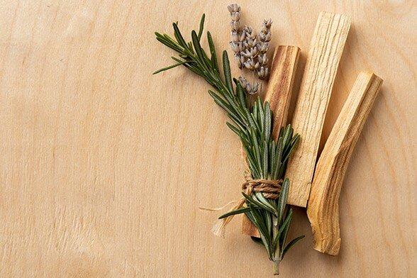 Salbei und Lavendel sind mit einem Stück Holz zusammengebungen