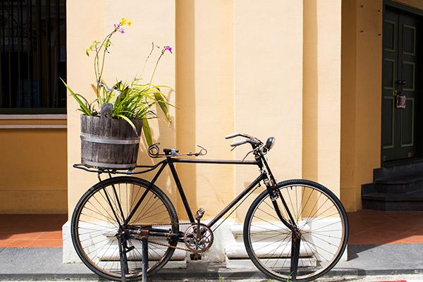 Ein altes Fahrrad mit einem Blumentopf auf dem Gepäckträger ist an eine gelbe Wand gelehnt.
